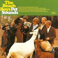pet sounds (1966)