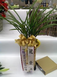 Oriental and Western orchid