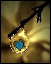 sos la miel q envuelve mi corazon