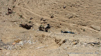 4 разбившиеся машины в ущелье в Израиле