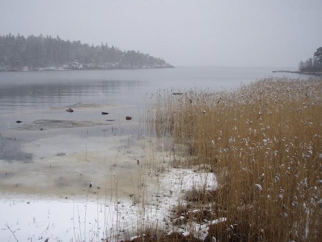 Är det inte sommar snart? 2009-03-10
