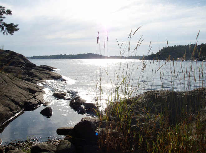 Korvgrillarkväll och bad med dottern på Femöre 2010-08-05
