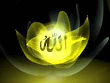>> zikrullah..(al-hadid:19)