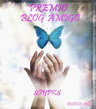 Premio Blog Amigo Otorgado por Vilma Fontana