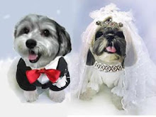 Wedding Pawtrait