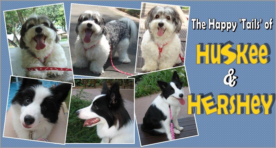 Huskee & Hershey