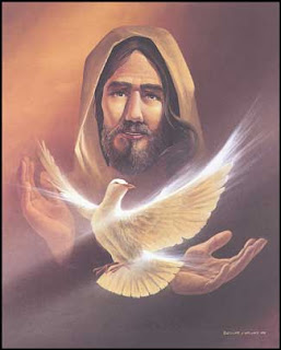 white bird in Jesus Christ background holy spirit image