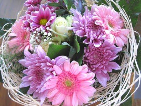 vackra blommor bilder