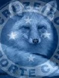 Blog Raposa Azul