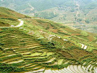 Sapa Lands