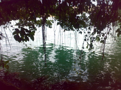 Keindahan Sungai Di Sulawesi, Terpendek Di Dunia [ Foto ] [ www.BlogApaAja.com ]