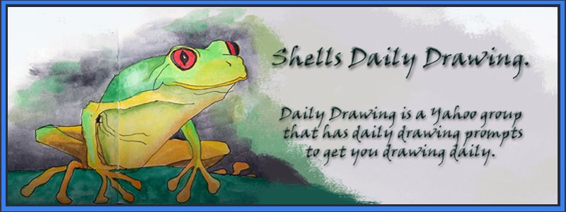 shells daily drawing
