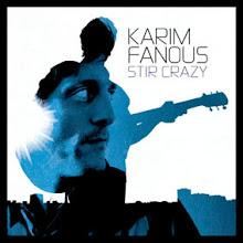 Karim Fanous