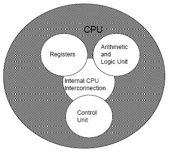 central processing unit cpu computer science essay Some writers describe a computer's central processing unit, or cpu,  your brain  comes with hardwired programming for actions such as.