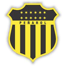 C.A.PEÑAROL - DOLORES