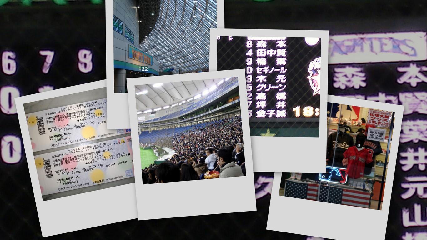 [collage2.jpg]