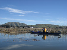 Kayaking Tours with Point Reyes Outdoors