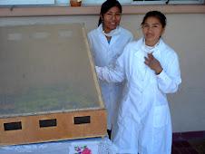 Secadores solares un proyecto coordinado con la UTN