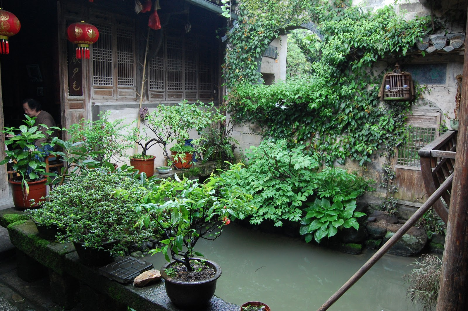 Noel 39 s garden blog more chinese travels for Kingsbury garden designs