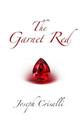 A Novel by Joseph Crisalli