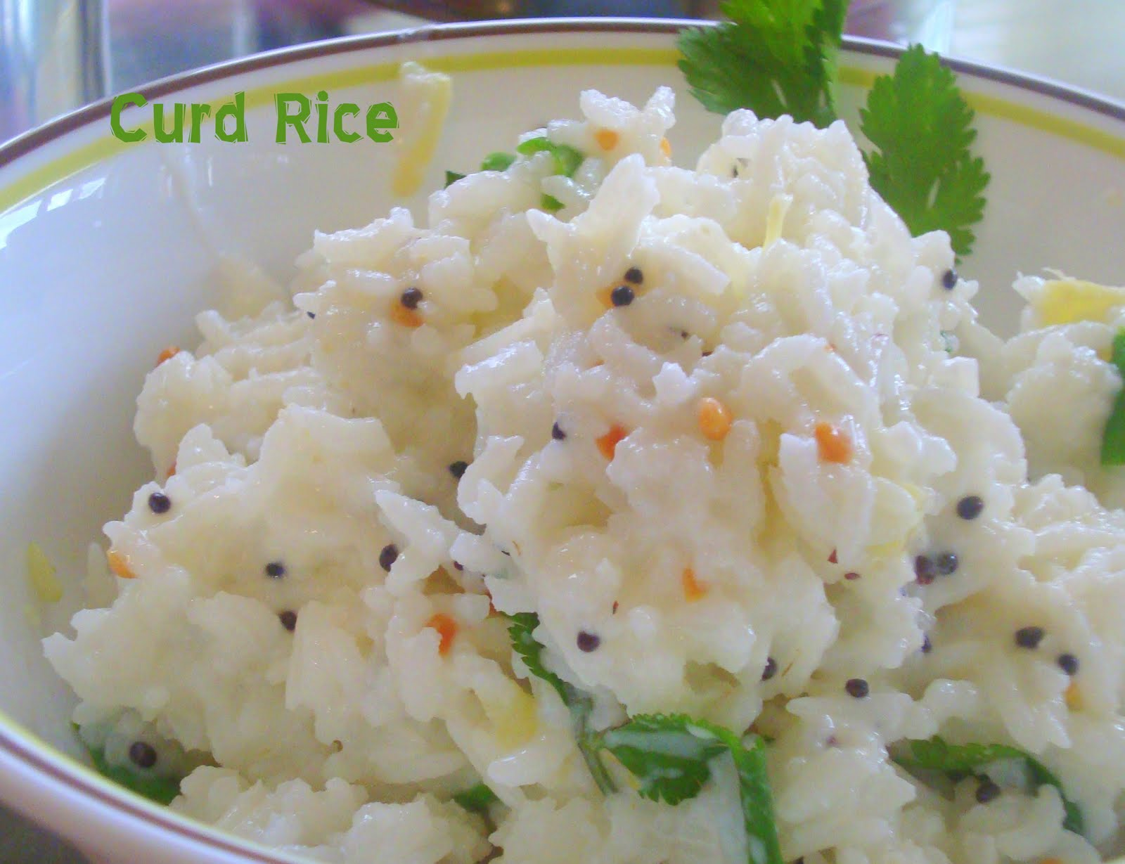 How To Make Curd Rice Curd Rice Recipe | Apps Directories