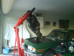 Stag's engine removal