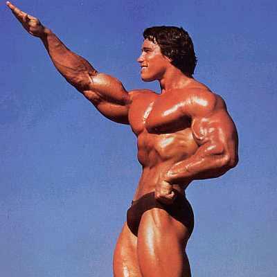 arnold schwarzenegger bodybuilding. arnold schwarzenegger