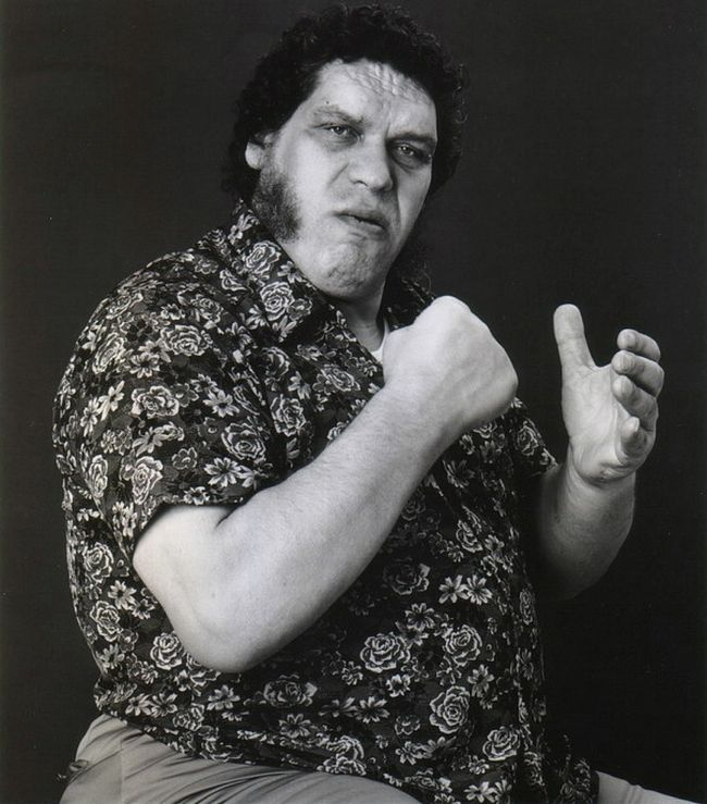 andre the giant - photo #14