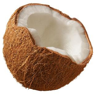 fruit in spanish is coconut a fruit