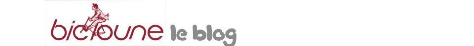 Bicloune le blog