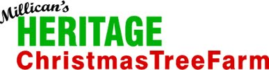 Millican's Heritage Christmas Tree Farm