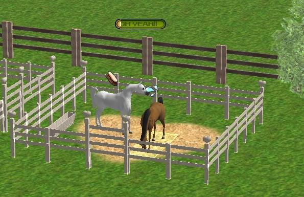 Virtual Dog Breeding Training Game