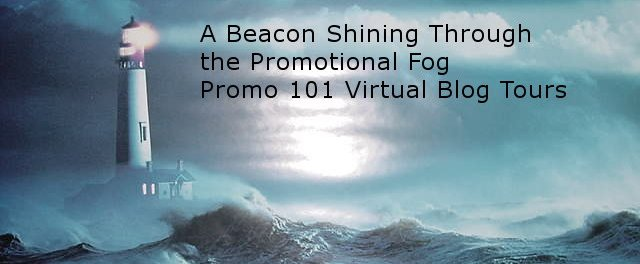 Promo 101 Virtual Blog Tour