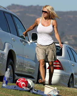 Pamela Anderson Busty Candids