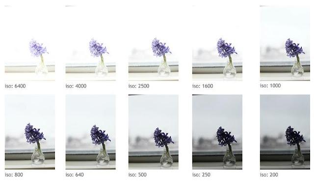 Photography Database - Hari Bhagirath Photography: ISO