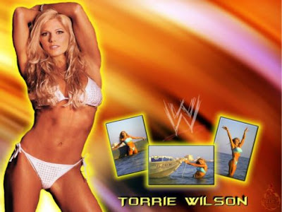 wwe diva wallpapers. candice - WWE Divas Wallpaper