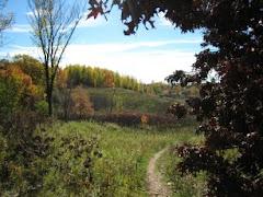 Hyland Lake Park