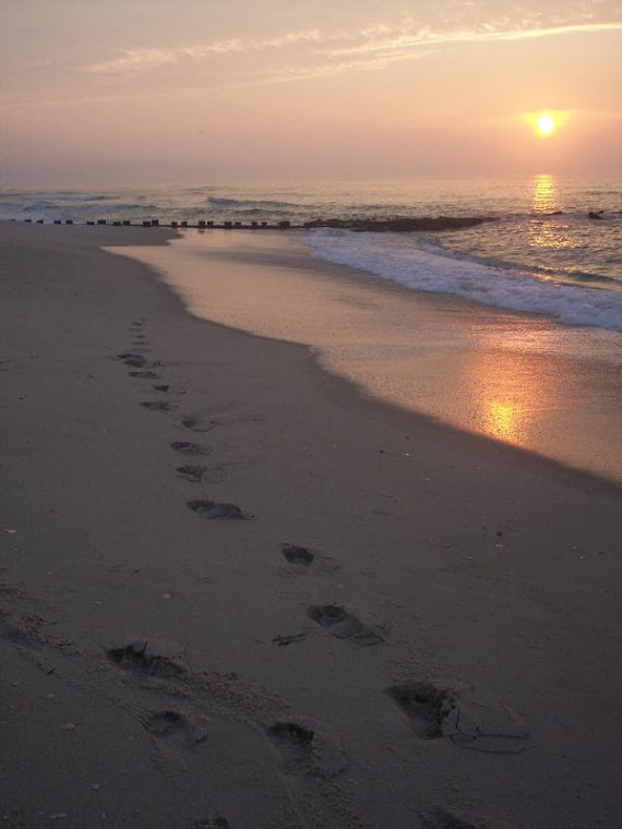 footprints to eternity