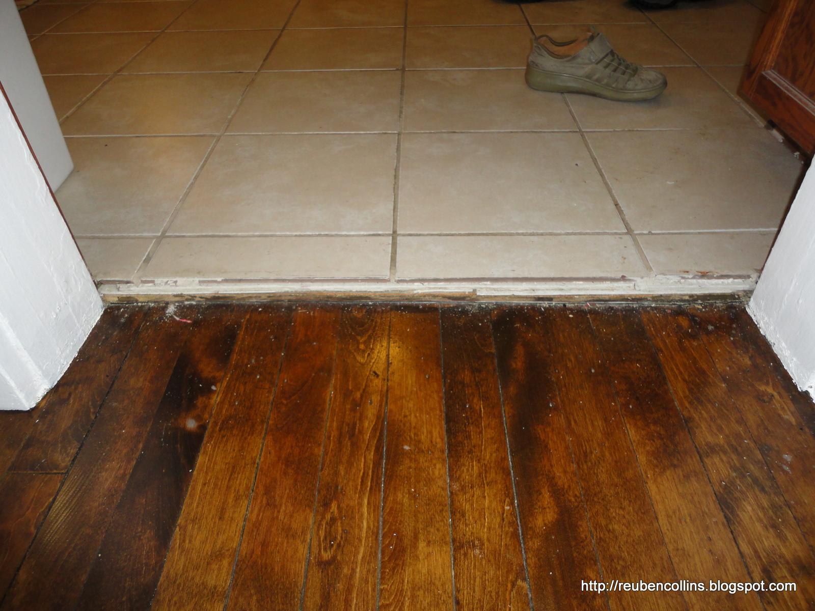 Kitchen flooring next to hard wood floors wood floors for Wood floor next to tile