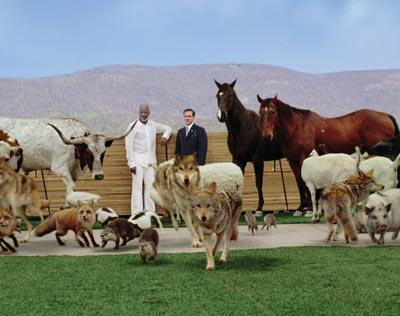 Evan Almighty Animals Arrive