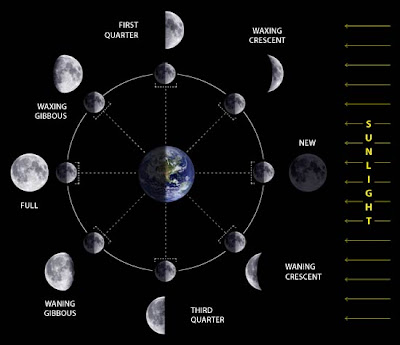 pictures of moon phases in order. Pp, abs, and toin the widely
