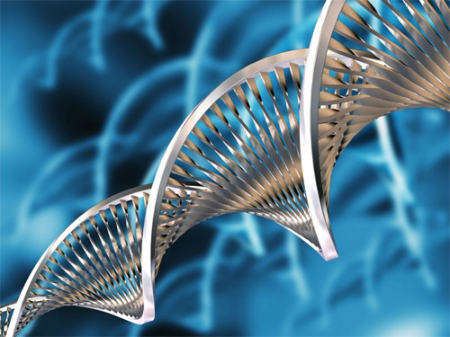 biotecnologia.jpg (500×375)