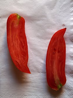Il pomodoro tagliato a metà. Foto di Andrea Mangoni.