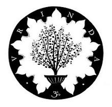 Instituto de Vrindavan para la cultura y los Estudios Vaisnavas