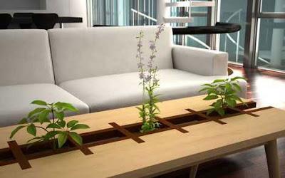 Perabot Hiasan Dalaman Rumah Berkonsep Hijau