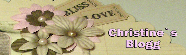 Christine`s blogg