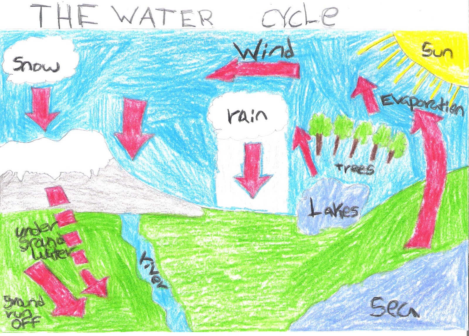 water cycle google