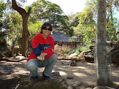 Taronga Zoo - Austrália