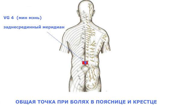 Точки на спине для массажа от боли 70