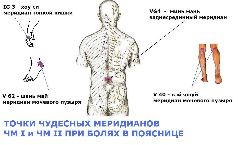 Если болит живот и спина симптомы могут это быть беременность